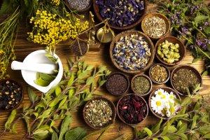 suplementacao-com-plantas-medicinais